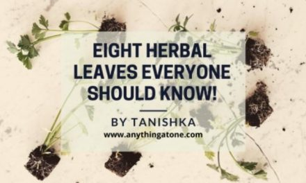 EIGHT HERBAL LEAVES EVERYONE SHOULD KNOW!